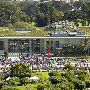 California Academy of Sciences 0005.jpg