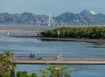 Shenzhen Bay-Tom Fox-0380.jpg